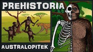 """Australopitek - Chodząca """"Małpa"""" - Prehistoria - Odc.2 - Historia na Szybko"""