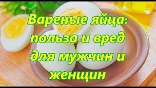 Вареные яйца: польза и вред для мужчин и женщин
