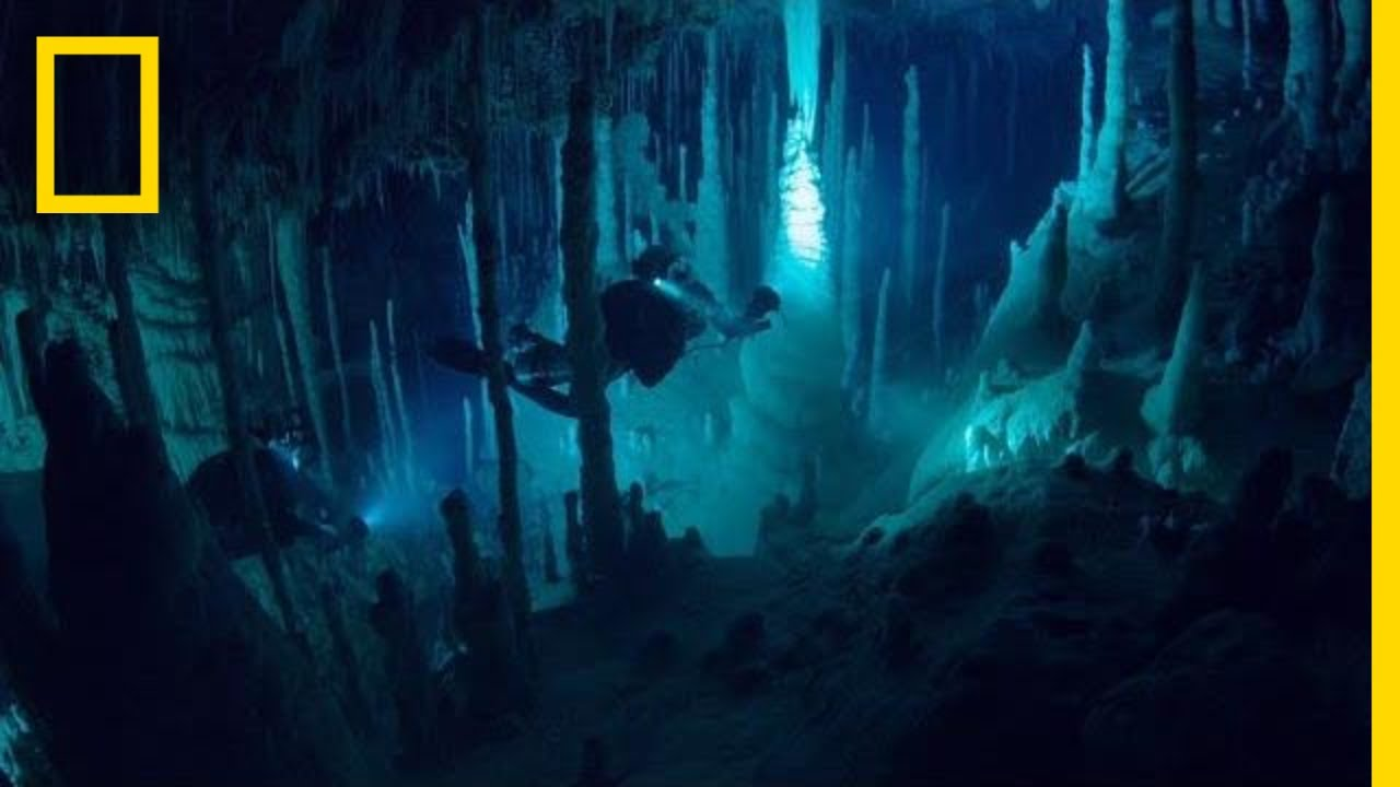 There's an Alien World Beneath Our Feet | One Strange Rock