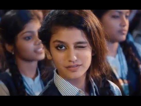 Download Priya Prakash Varrier South Indian Girl Eyebrow Girl Love Full Video