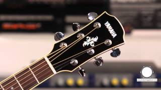 Yamaha APX 700 II electro-acustica, played by Horea Crisovan