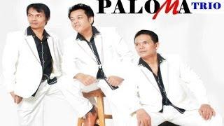 lagu batak terbaru 2013 HODO INANG NI GELLENGKU Mp3