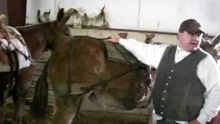 6 the sawbuck saddle.MOV