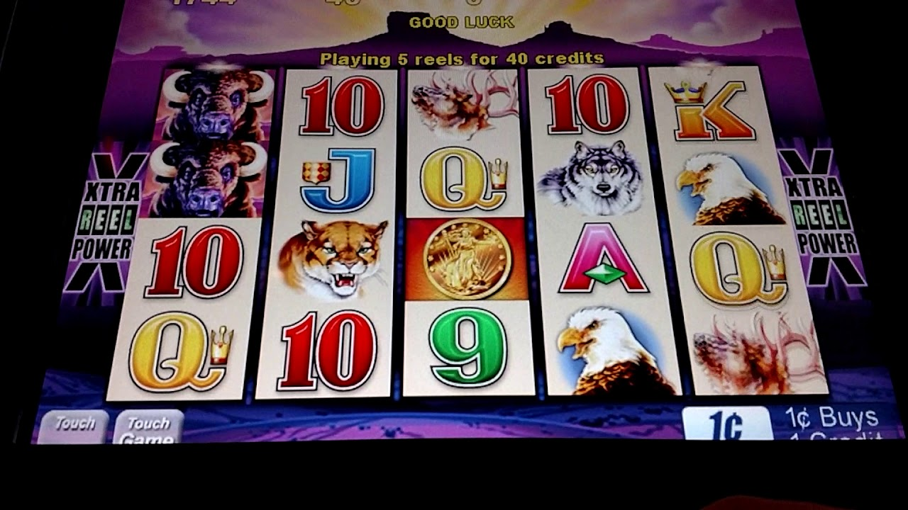 Buffalo Penny Slot Machine Play Youtube