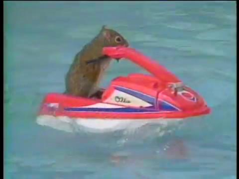 Waterskiing Squirrels 1988
