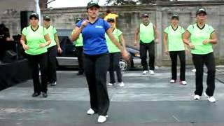baile-aerobico-para-principiantes-la-vida-es-un-carnaval