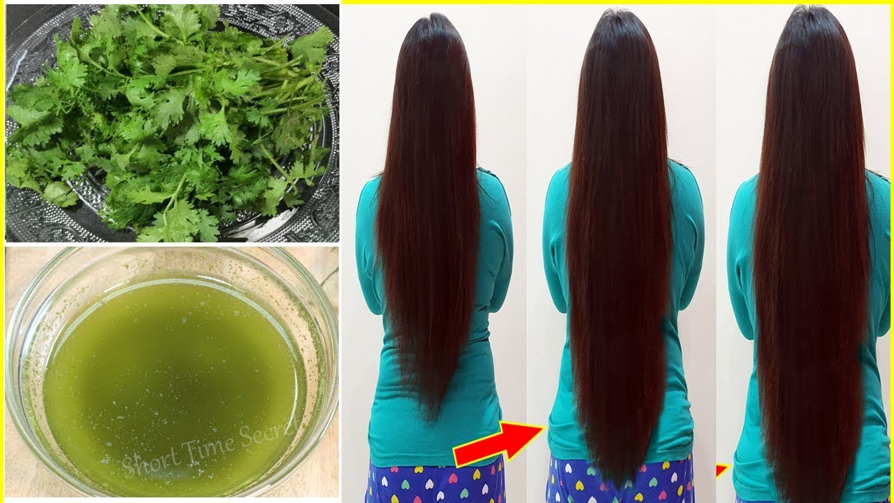coriander oil for super fast hair growth challenge | how to