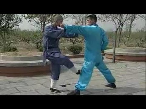 Shaolin kung fu fighting: 20 techniques
