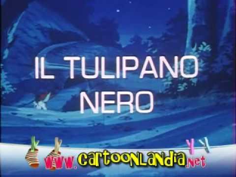 Dvd cartoni il tulipano nero la spadaccina e il pianista