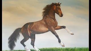 Лошади Казахстана! Катание на лошади.