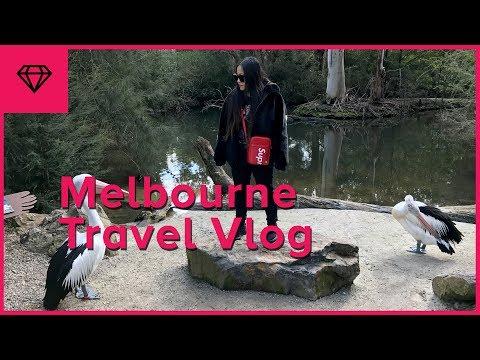Melbourne Travel Vlog | nitro:licious