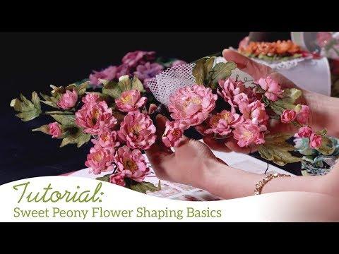 Sweet Peony Flower Shaping Basics