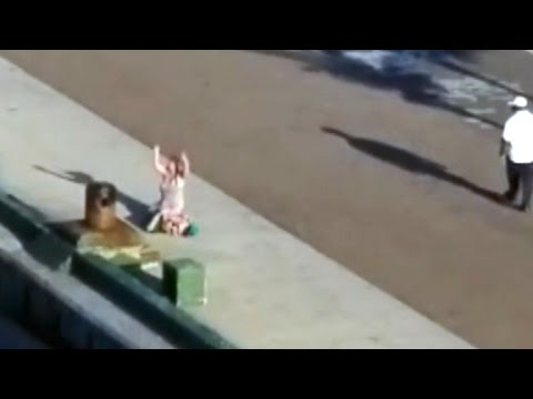 Thumbnail: Mom Distraught On Dock After Cruise Ship Leaves With Her Kids On Board