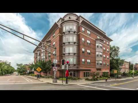 120 Mountfort St, Unit 406, Boston MA - Adam Chen - Tel: 857 998 8822