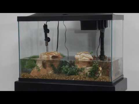 Marineland® Products — 20 Gallon Aquarium Kit Setup