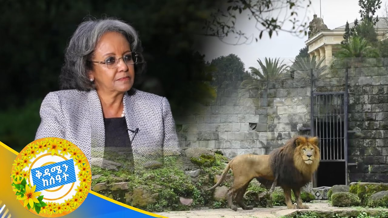 Special interview With President Sahle-Work Zewde