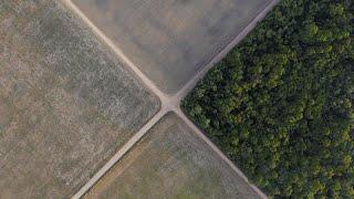 Спасти природу планеты