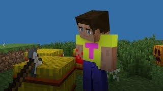 Minecraft Animation: Growing Wheat