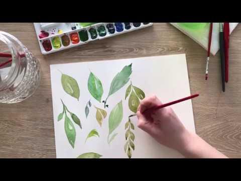 Watercolor Basics: How