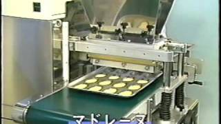 FOULHOUX BAKERY AND FOOD INC AR 52 JAPANESE COOKIE DEPOSITOR