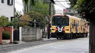 熊本電鉄 普通の電車が道路を走る