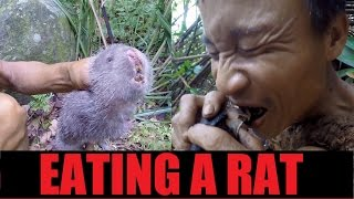Hunting and eating a RAT | Tarzan Documentary (3 of 11)