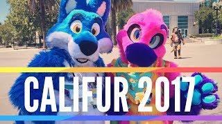 Califur 2017