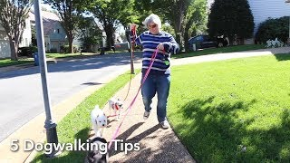 5 Dog Walker Tips