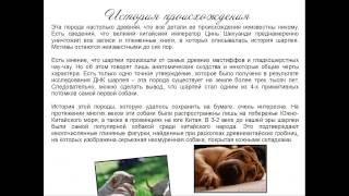 """Губжоков Тамерлан. Презентация """"Породы собак"""""""
