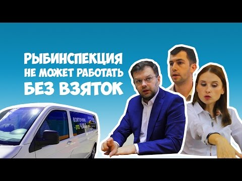 """""""Рыбинспекция берет взятки, чтобы ловить браконьер"""