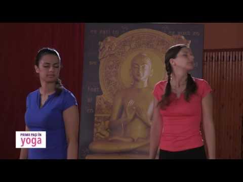 Primii pași în yoga S2 Ep.12 - Treptele de bază ale practicii YOGA: ASANA