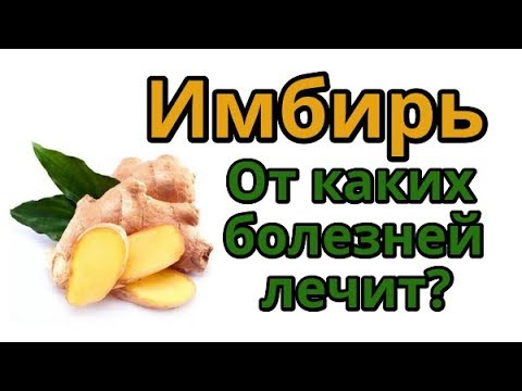 Вопрос: Сохраняют ли цукаты из имбиря все полезные свойства его свежего корня?