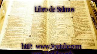 Salmo 17  Reina Valera 1960