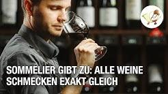 Sommelier gibt zu: Alle Weine schmecken exakt gleich