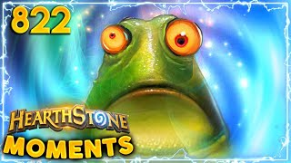 Most EXPENSIVE Frog Ever | Hearthstone Daily Moments Ep.822