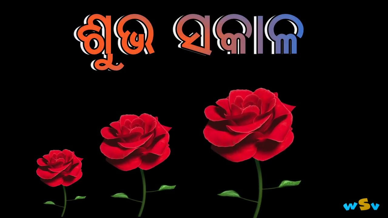 Good Morning Subha Sakaala Odia Whatsapp Status Video Youtube