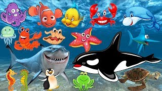 Learn the names and sounds of marine animals | animal cartoon images for children