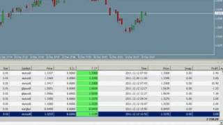 Tom's EA Forex Robot  - Trading Results Toms EA