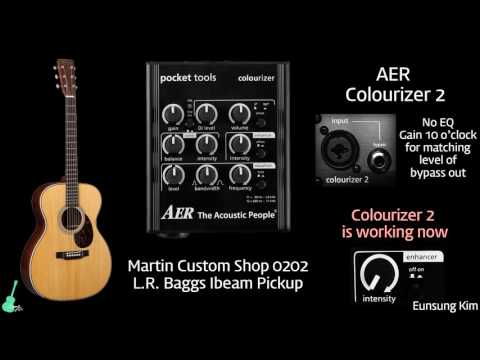 AER Colourizer 2 with Martin 0202 Custom Shop (L.R. Baggs Ibeam)