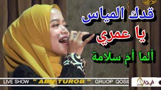 Gambar cover cover qoddukal mayyes by alma ummu salamah dan bunda kiki amalia