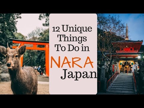 NARA JAPAN TRAVEL GUIDE // 12 UNIQUE Things To Do In Nara