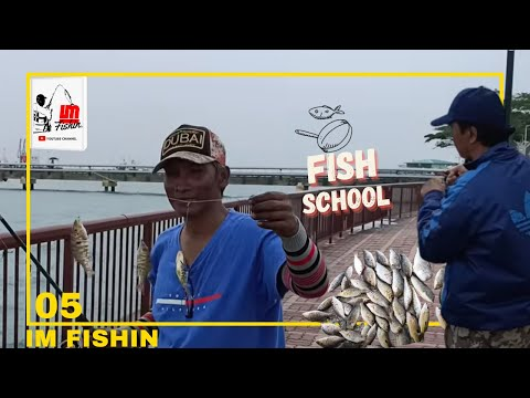 Singapore Fishing 2020 | Multi Species Saltwater Fishing For Beginners On Shore