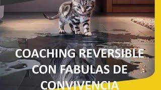 ¿Qué es el Coaching reversible con fábulas de convivencia? Paty Wilensky co-creadora de la técnica