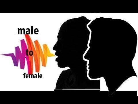 cara mudah merubah suara pria menjadi wanita dengan audacity