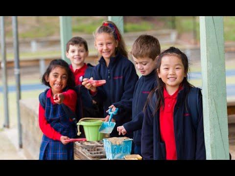 Croydon Hills Primary School Virtual Tour
