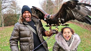 Meeting Giant Falcon Birds Of Prey - Educational Learning Video For Kids | Famtastic