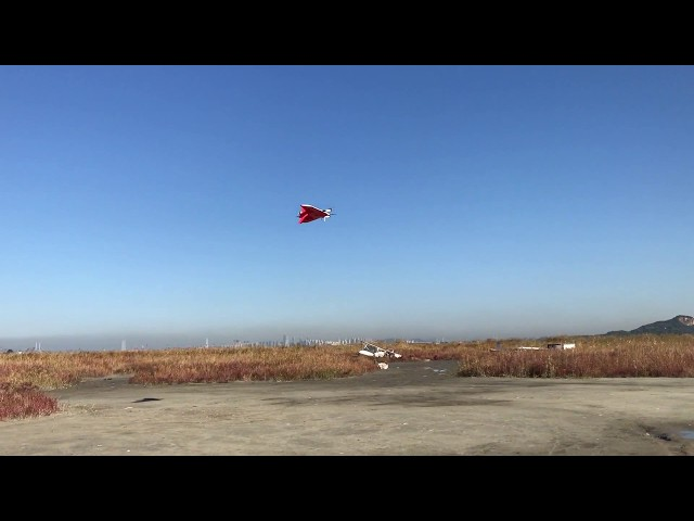 VTOL fixed wing MILVUS, automatic taking-off and landing.