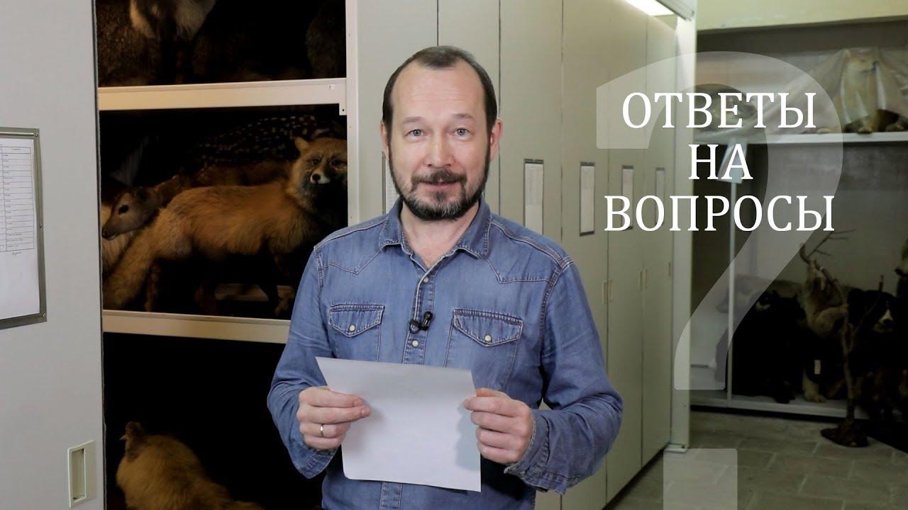 Всё, что вы хотели знать про коллекции музея. Игорь Фадеев