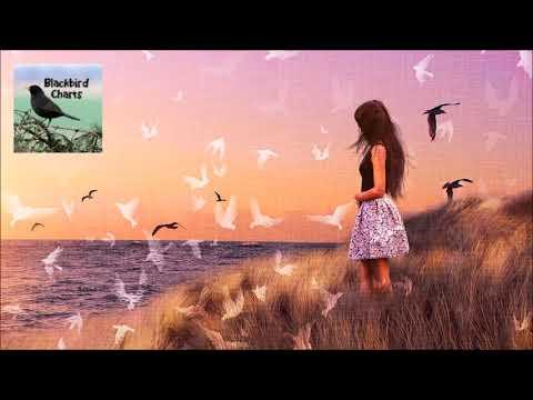 Sam Feldt X LVNDSCAPE ft. Tessa – Know You Better (Audio)