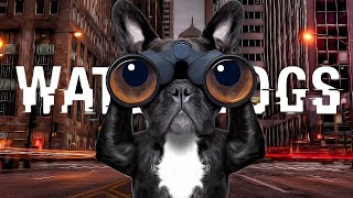 Watch Dogs: Gameplay - Part 2 - WHO LET THE DOGS OUT? (No one apparently). (Deleted PewDiePie Video)